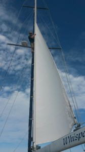 What a soon-to-be-replaced sail looks like