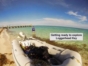 Loggerhead Key