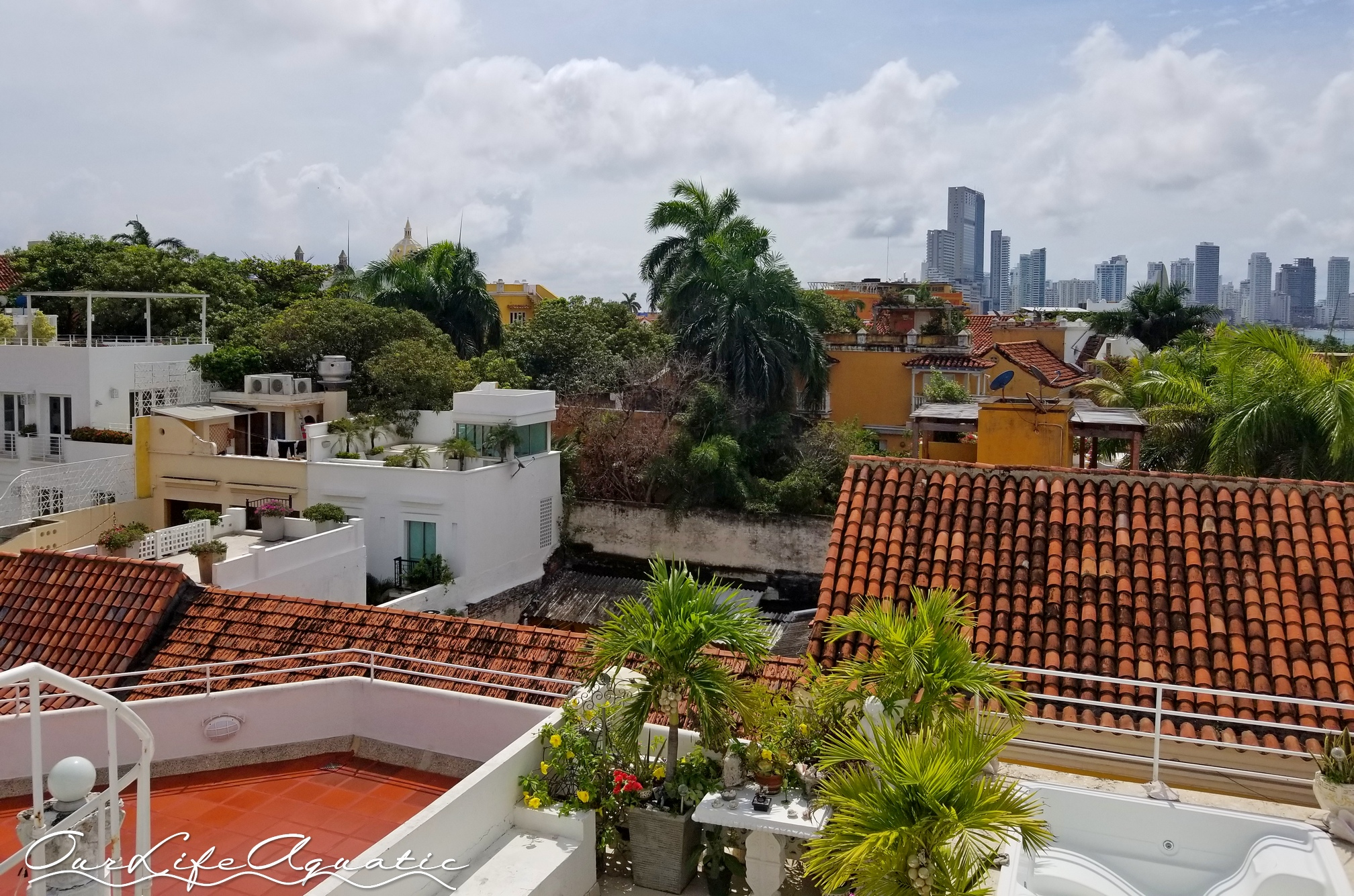 Rooftop view from our apartment building