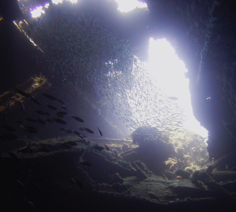 4 Salt Island Rhone inside