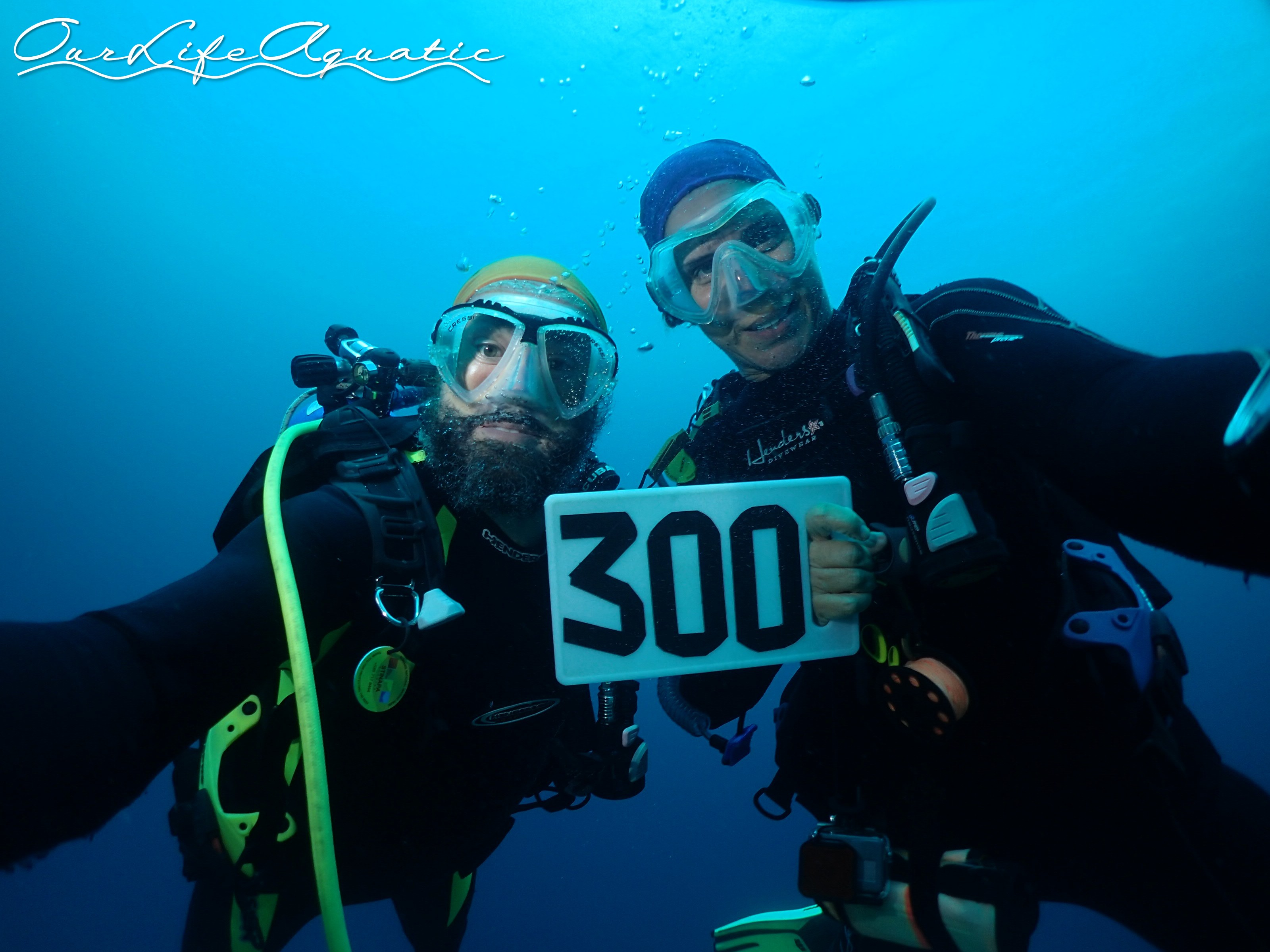 We dove so much we reached our 300th dives!