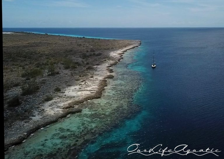 Day mooring for diving only at Klein Bonaire