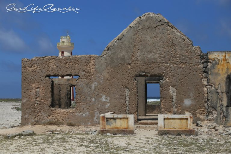 Ruins of a lighthouse keepers residence