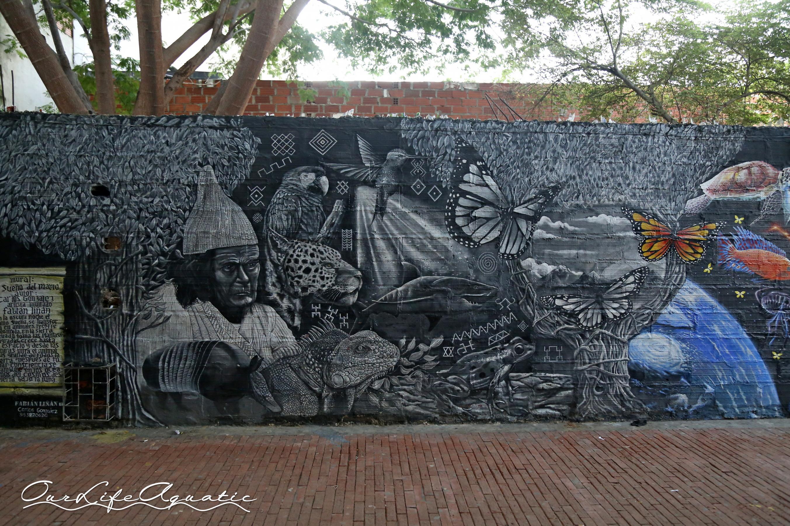 Beautiful graffiti in Santa Marta