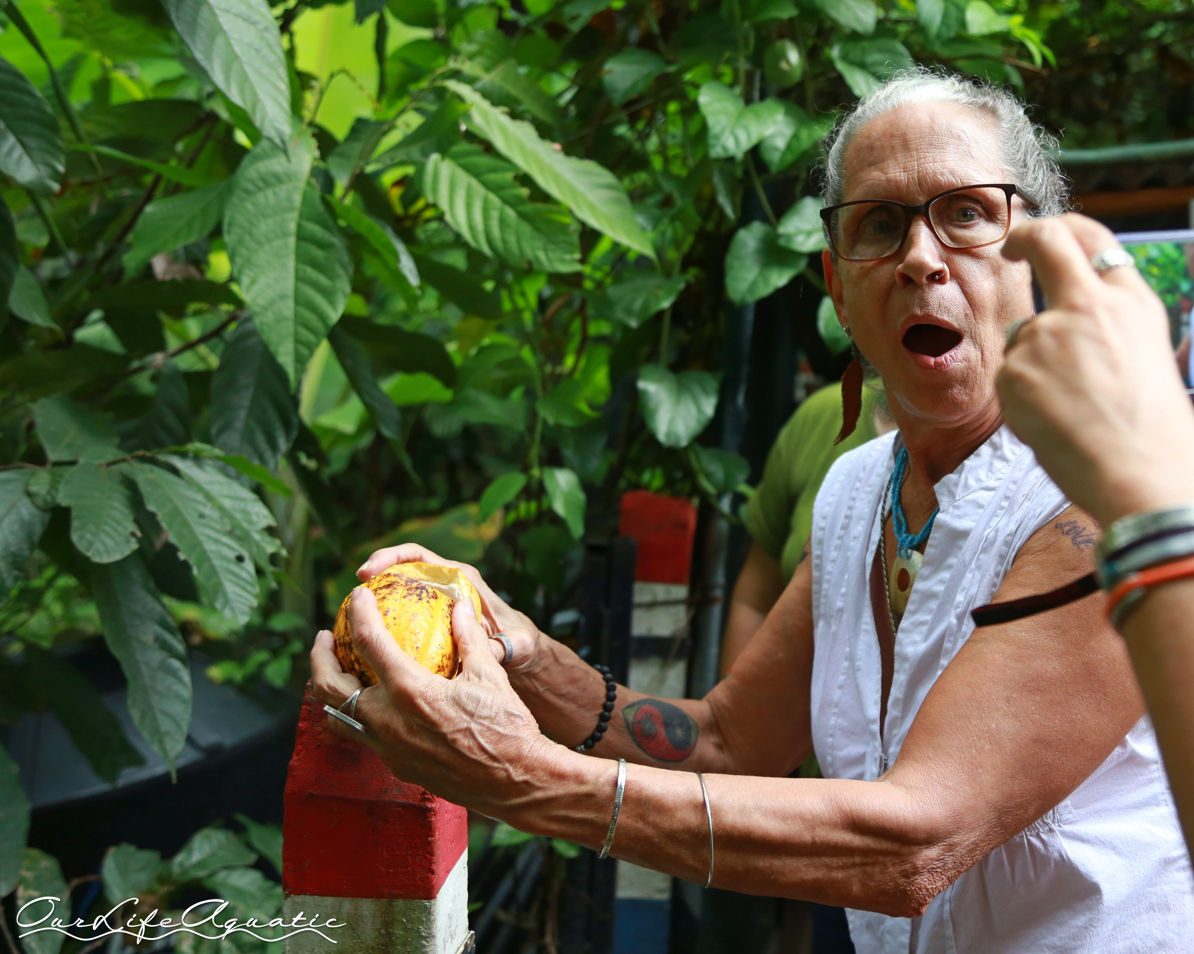 Kimberly's mom, Cindy, cracks open a cacao pod at Choco-Tour