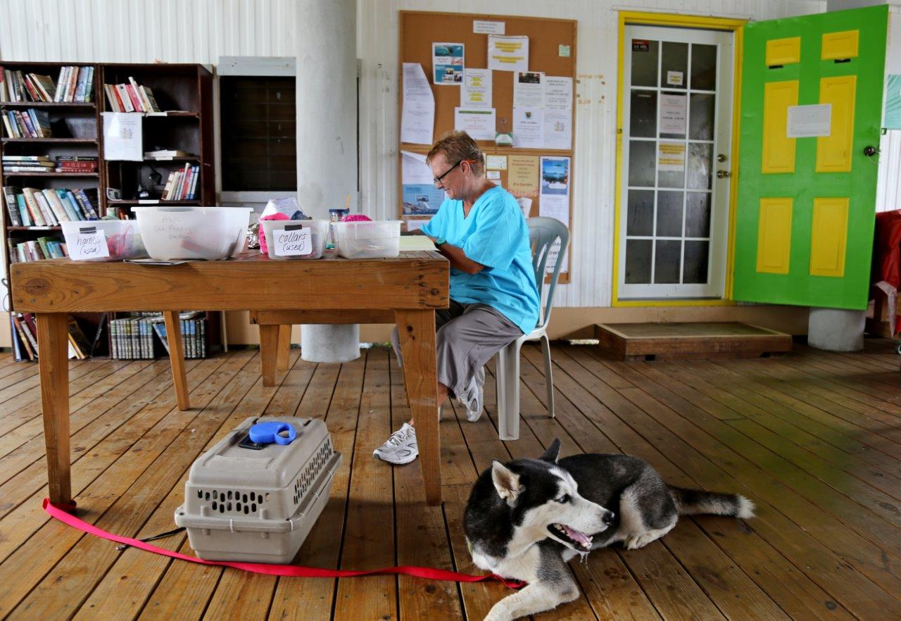 Our friend Sue doing vet clinic inprocessing