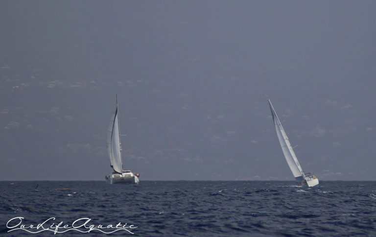 Leaving Guadeloupe with s/v The Kraken and s/v Carpe Ventum in pursuit