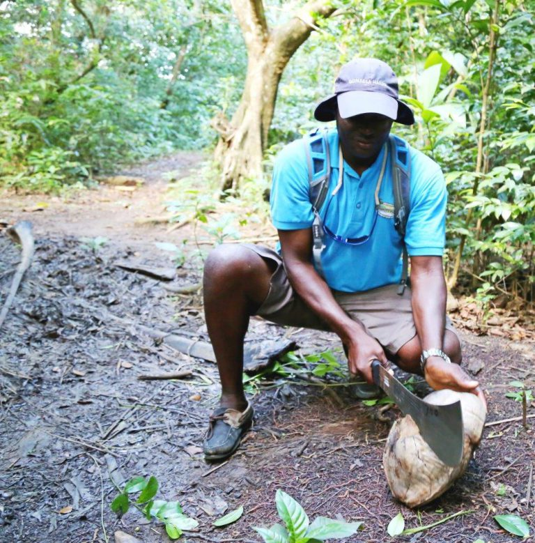 Whacking a coconut with the machete we brought along. Never go on a forest hike without one!
