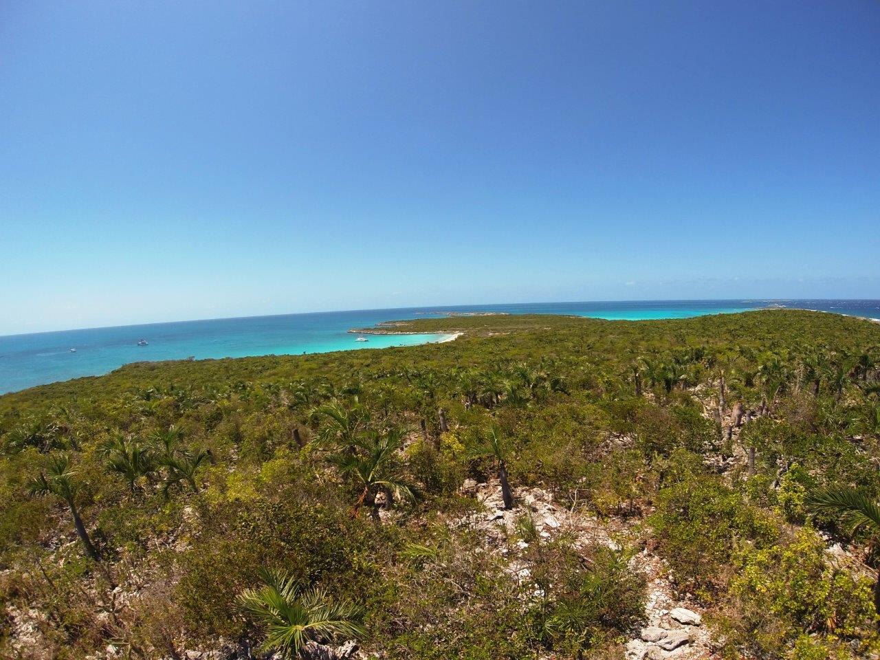 Flamingo Cay view 1