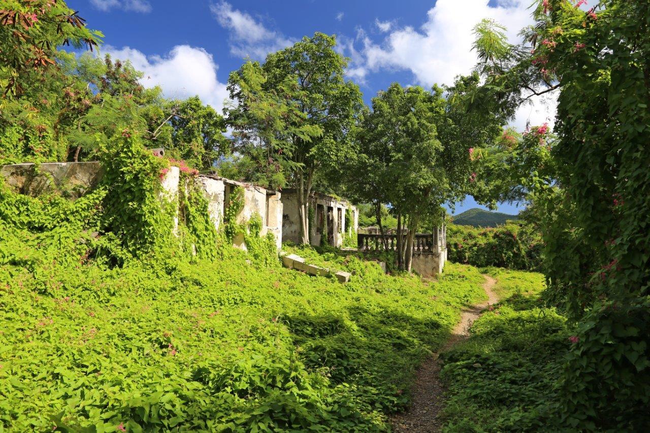 The ruins of a sugar plantation