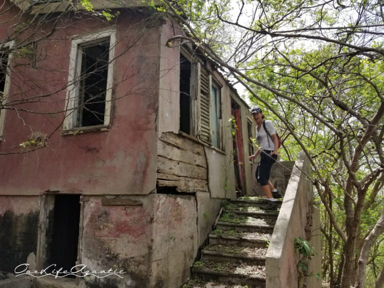 Exploring an abandoned house deep in the woods -- what could possibly go wrong?