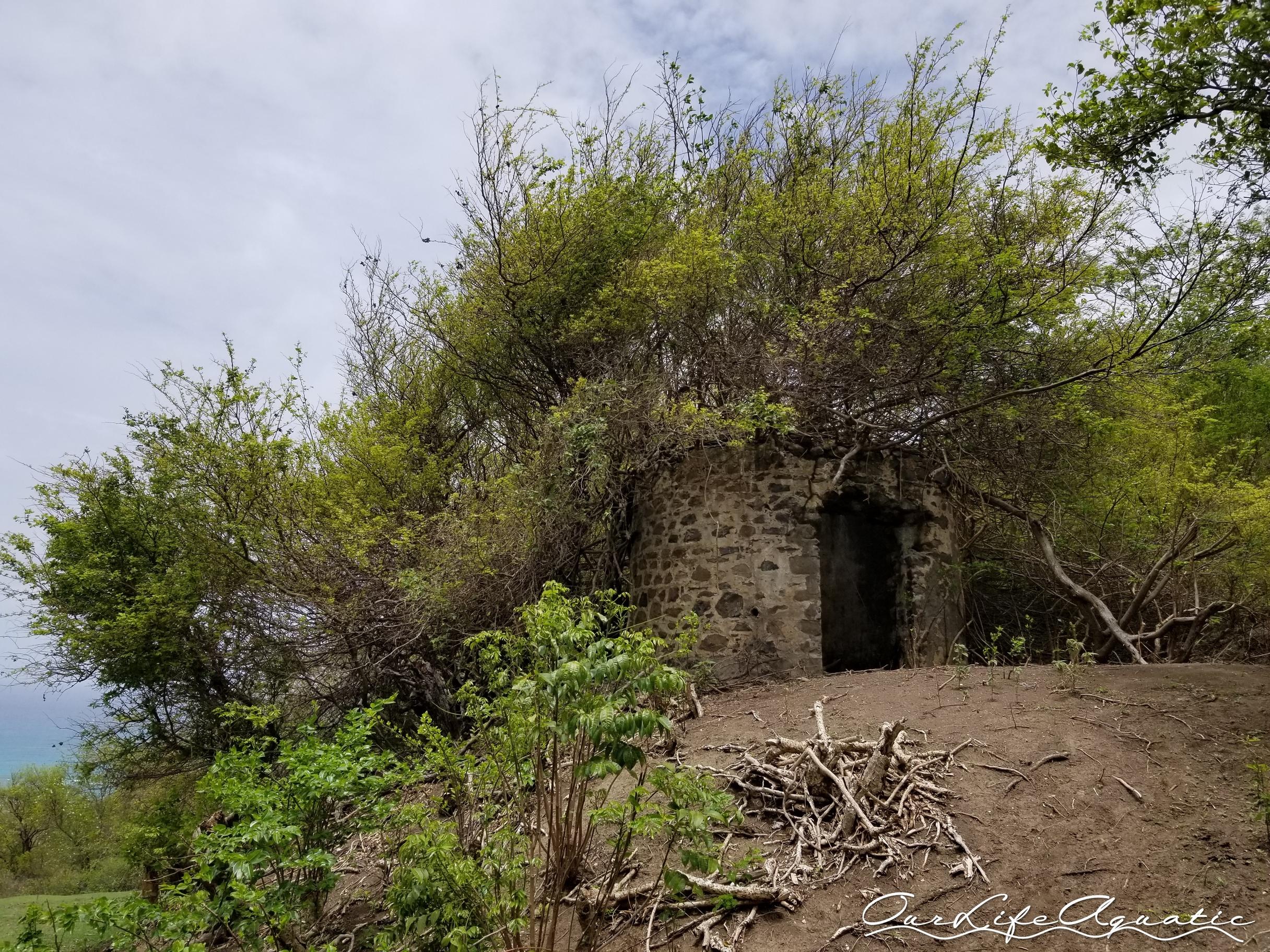 Hiking in Carriacou