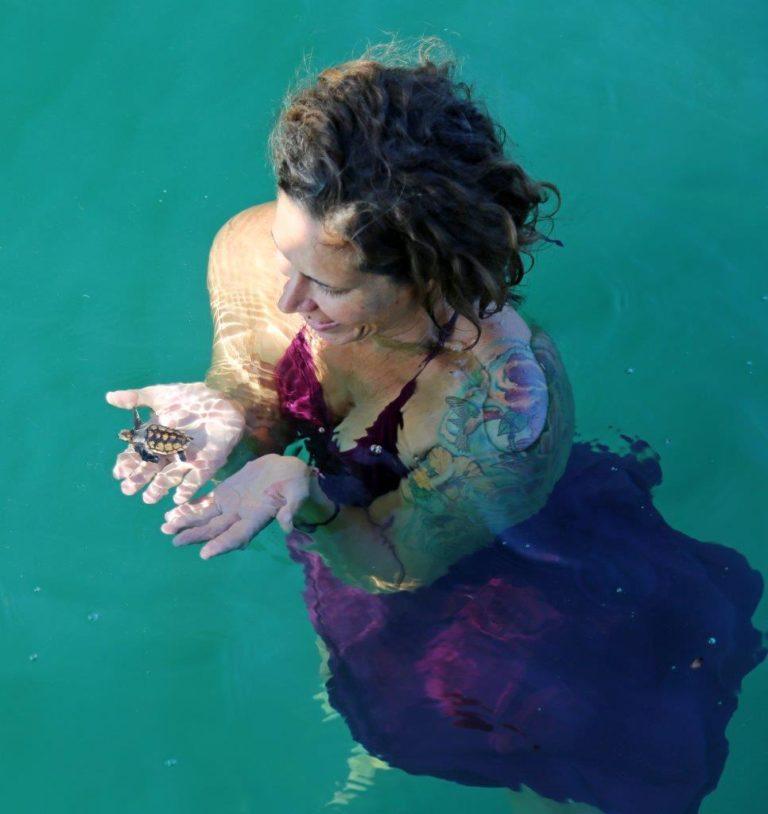 A turtle hatchling swam up to ¡Pura Vida!