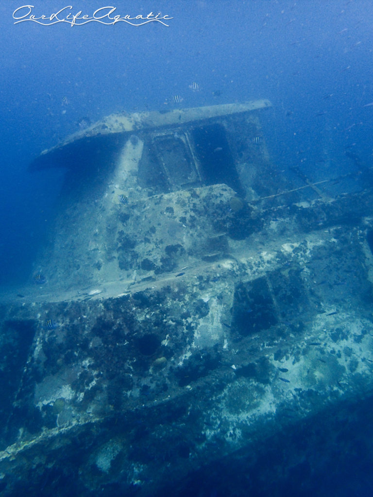 The wreck is right in the anchorage