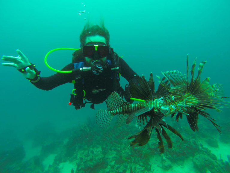Lots of Lionfish in these old wrecks
