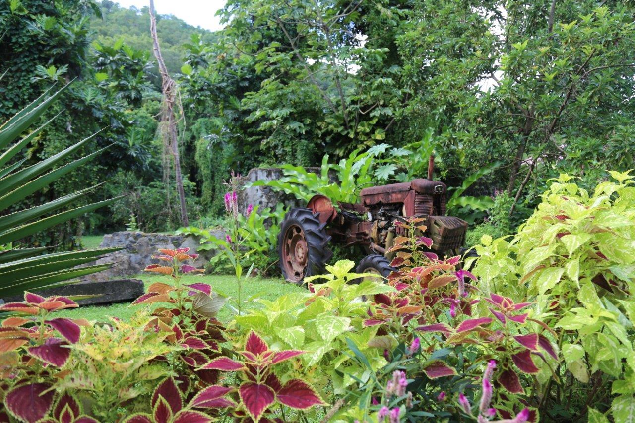 Gardens at La Mauny Rhum Distillery