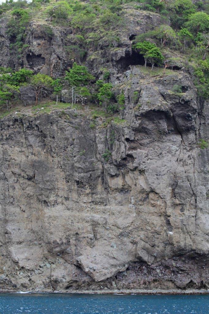 Montserat - Goats (1)