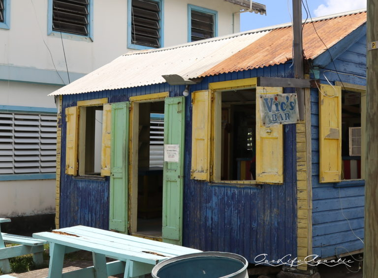 Rum shacks abound