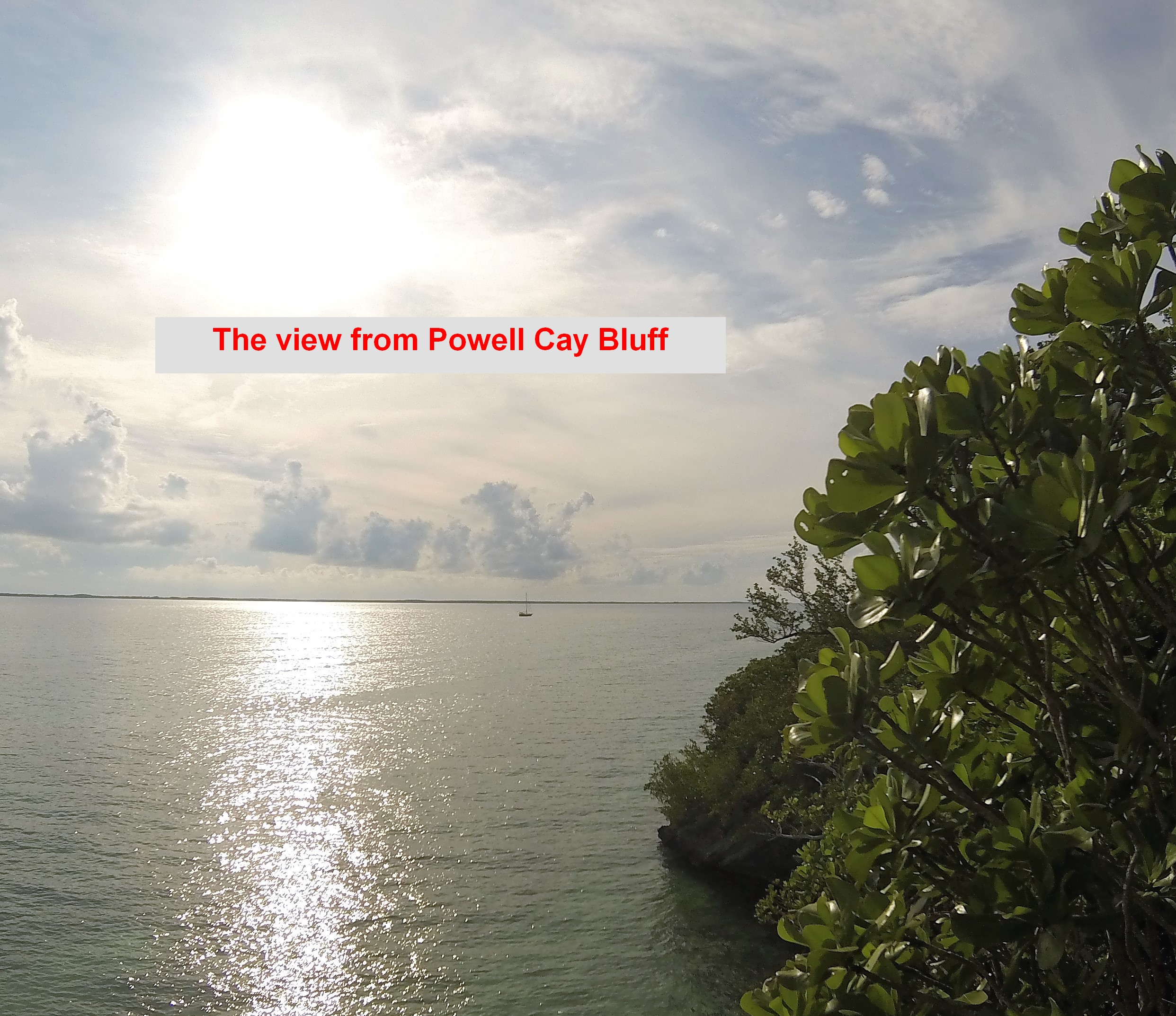 PV from Powell Cay1 (txt)