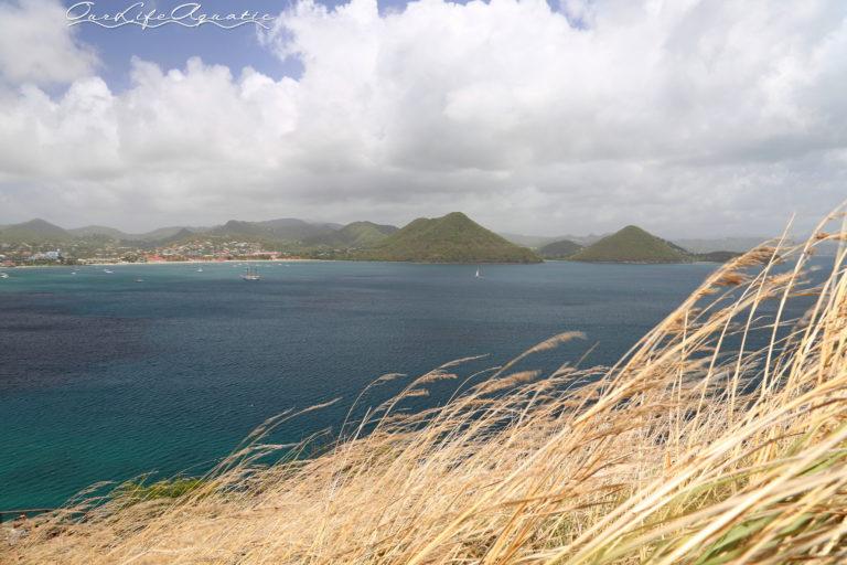 Rodney Bay