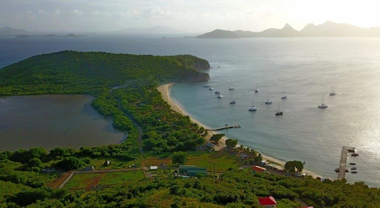 Saline Bay, Mayreau (Photo credit: Erin on Catamaran Flip-Flops)