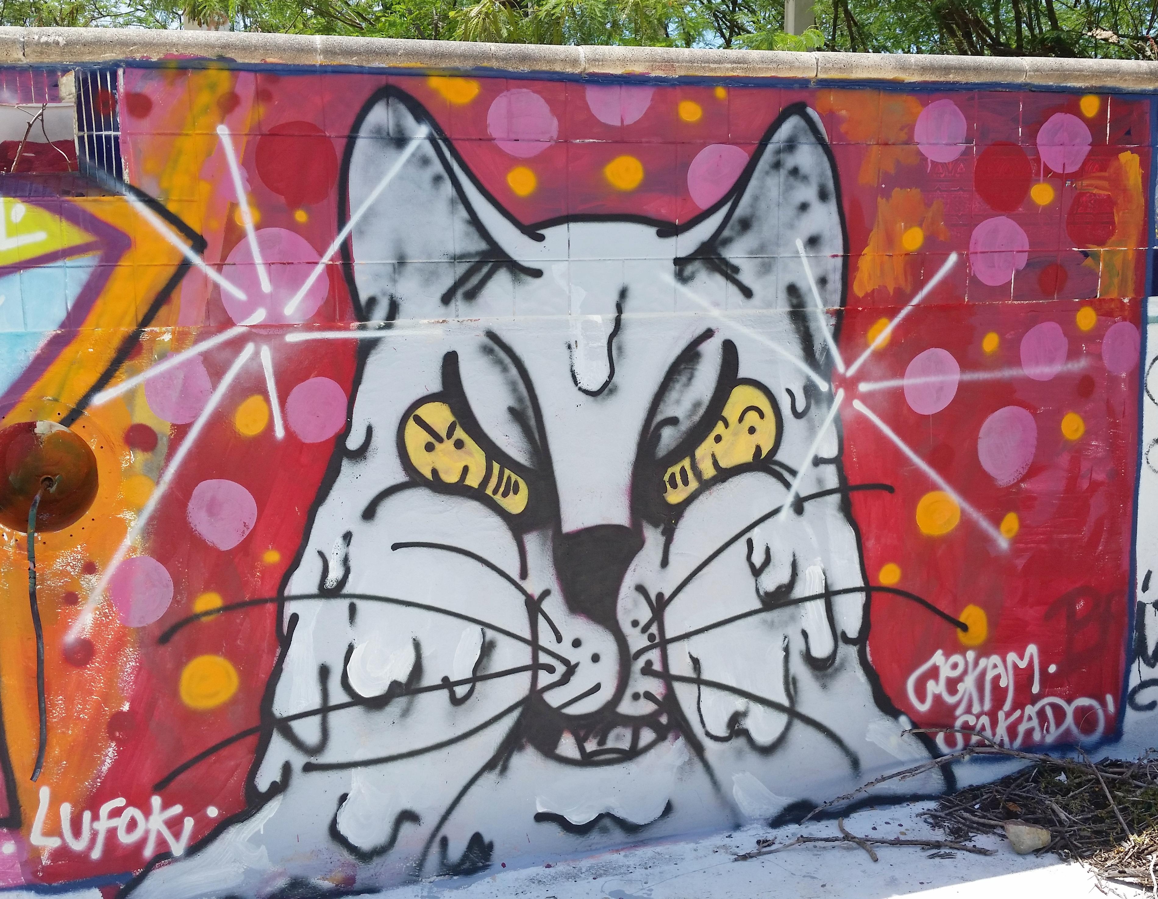 Graffiti street art in St. Martin