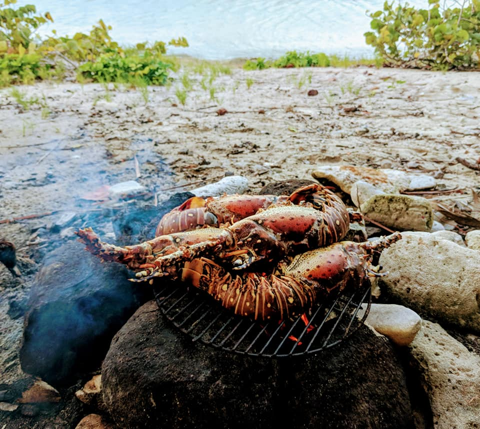Lobster on makeshift beach grill