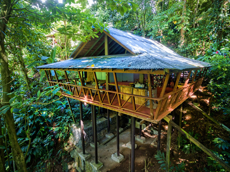 Who doesn't love a treehouse? (Photo courtesy of Cocoa Cottages)